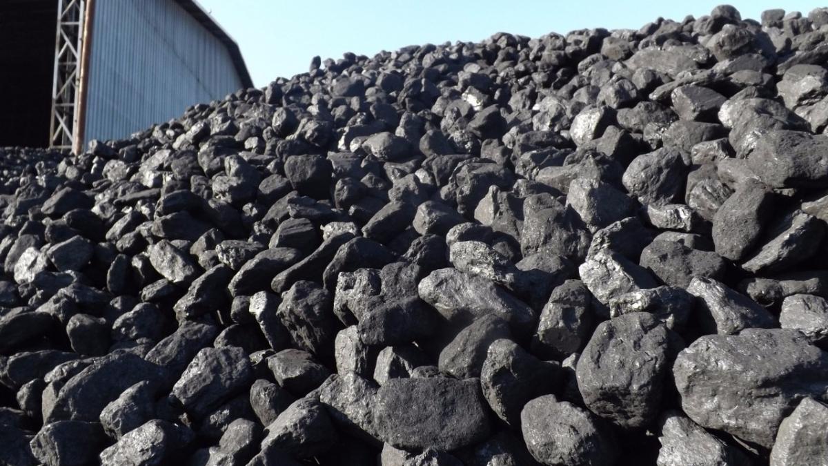 Linyit Kömürleri